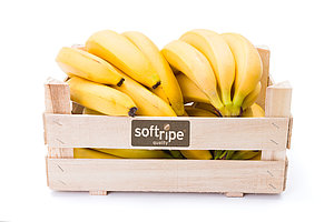 Bananas lie in a wooden box with the Softripe logo